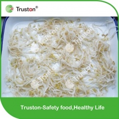 Canned Soy Bean Sprouts for Sale