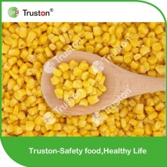 Cheapest Hot saling New Crop Sweet Corn